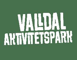 Valldal Aktivitetspark
